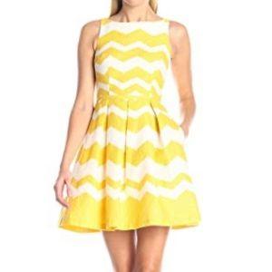 Taylor Dress Zig-Zag Jacquard Fit & Flare Dress